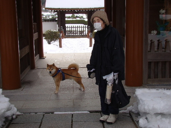 2013-01・21 永澤寺にて.JPG