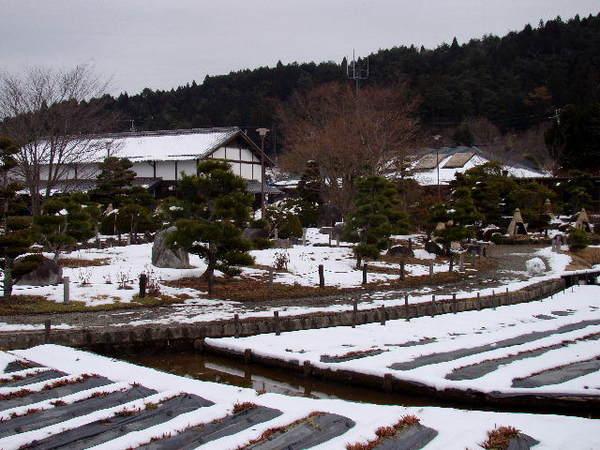 2013-01・21 永澤寺の雪景色 (4).jpg