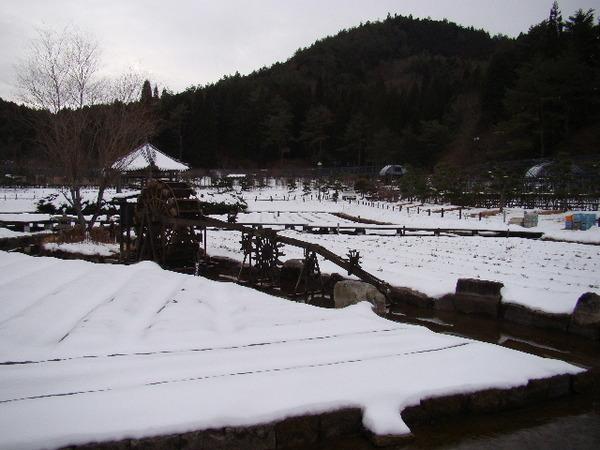 2013-01・21 永澤寺の雪景色 (6).JPG