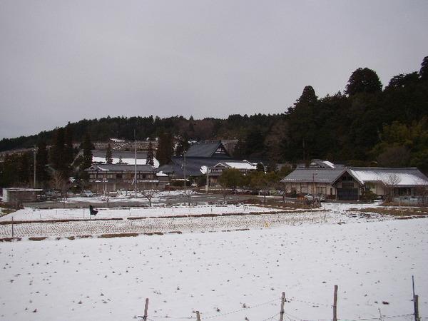 2013-01・21 永澤寺の雪景色 (7).JPG