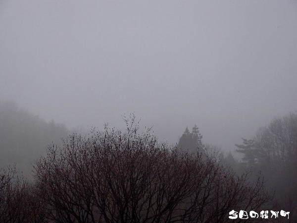 2013-01・22 今日の我が町.jpg