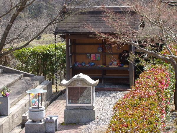 2013-03・15 墓地公園 (3).JPG