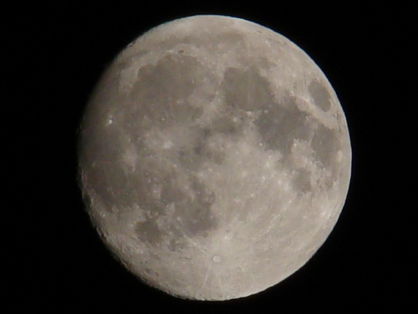 2013-05・23 十四夜の月.JPG