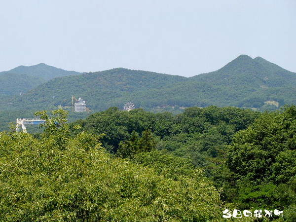 2013-06・04 今日の我が町.jpg