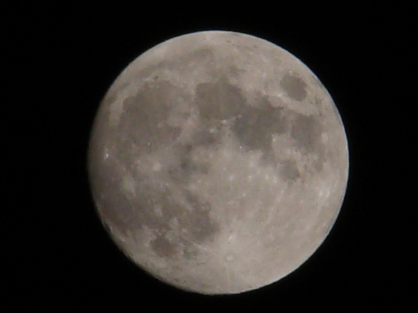 2013-11・16 十四夜の月.JPG