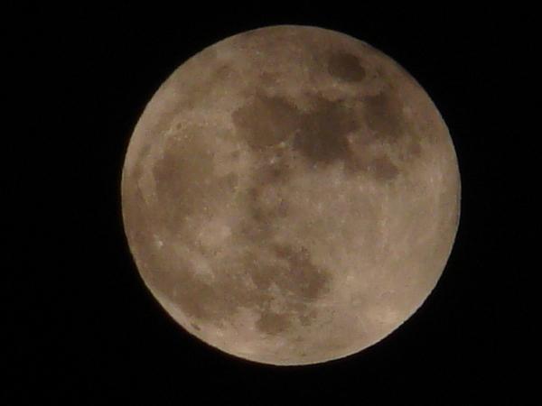 2013-11・17 霜月の満月 (5).JPG