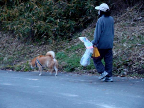 2013-12・07 散歩道で.jpg