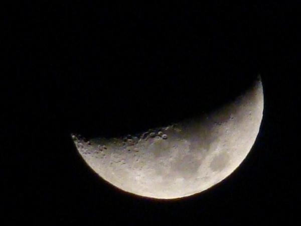 2013-12・08 夜半の月.JPG
