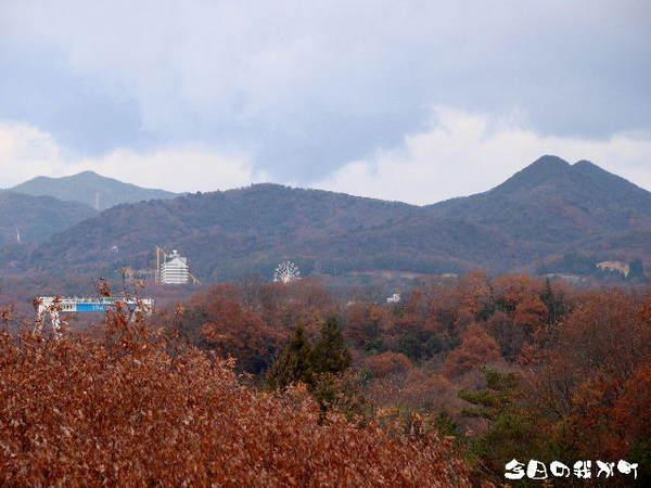 2013-12・10 今日の我が町.jpg
