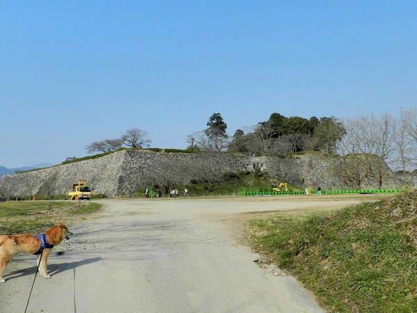 2014-03・17 篠山城跡 (1).jpg