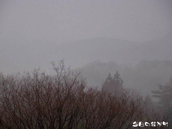 2014-03・20 今日の我が町.jpg