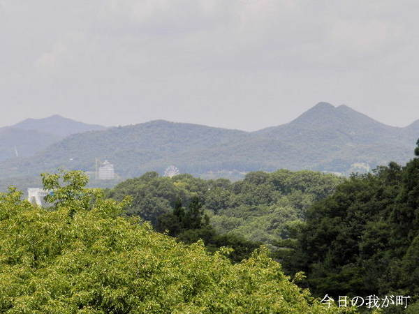 2014-06・25 今日の我が町.JPG
