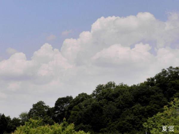 2014-06・25 夏雲.JPG
