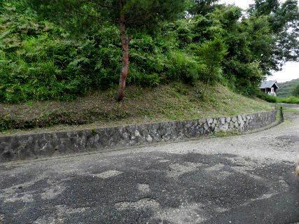 2014-08・29 雑草刈りを.JPG
