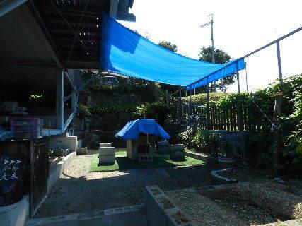 2014-08・31 我が家のスナップ (1).JPG