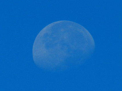 2014-09・13 朝の空に.JPG