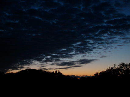 2014-09・20 夕闇が・・・.JPG