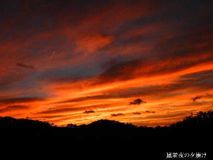 2014-10・04 嵐前夜の夕焼け (2).JPG