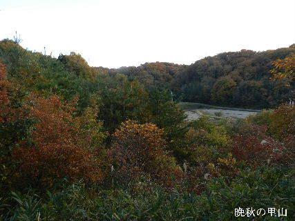 2014-11・23 晩秋の里山.JPG