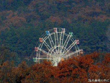 2014-11・30 霜月最後の日に (3).JPG