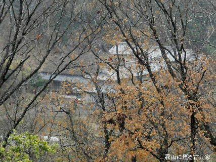 2014-12・16 霧雨に煙る古民家.JPG