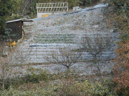 2014-12・18 里山にも初雪が (3).JPG