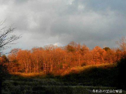 2014-12・25 冬枯れの里山と雪雲.JPG