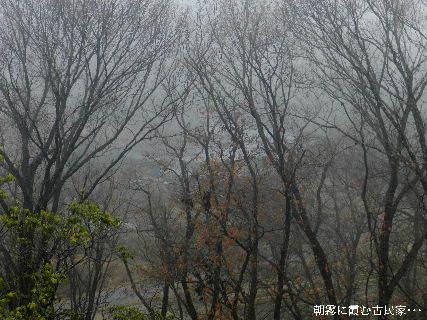 2014-12・29 朝霧に霞む古民家・・・.JPG