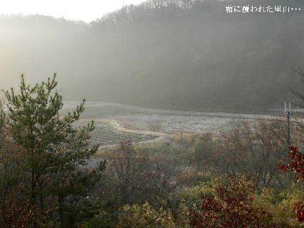 2014-12・30 霜に覆われた里山・・・.JPG