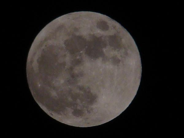 2013-11・17 霜月の満月 (1).JPG
