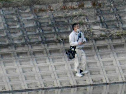 2014-11・27 今日の池には (4).JPG