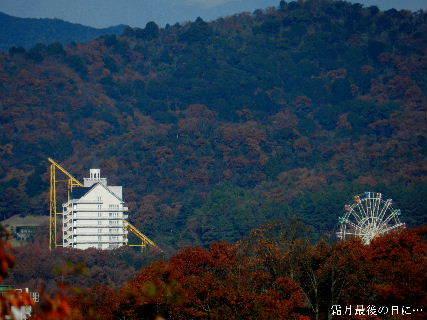2014-11・30 霜月最後の日に (1).JPG