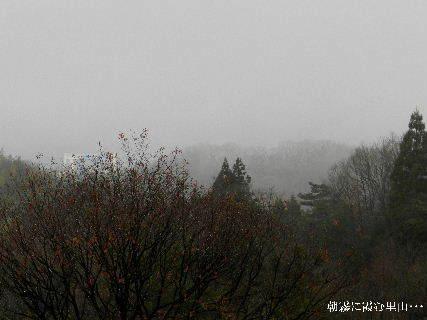 2014-12・29 朝霧に霞む里山・・・ (3).JPG